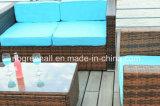 Le sofa extérieur de patio place le rotin/meubles de jardin