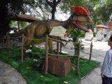 Музей динозавров оборудования статую модели