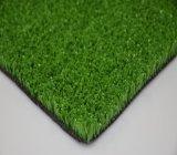 Het Synthetische Gras van de Grond van de vrije tijd (TT)