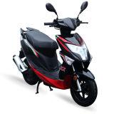 49cc 50cc moteur 2t 4-AVC Gaz Air-Cooled scooter moto Moto Euro 4 125cc 150 cc Moto