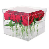 Roses를 위한 가장 새로운 Acrylic Preserved Fresh Flower Box