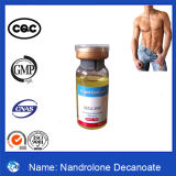 Bodybuildender pharmazeutischer Grad-Steroid-Hormon-DecaDurabolin Nandrolone Decanoate
