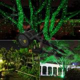 Het groene Bewegende Licht van de Laser van de Glimworm Openlucht