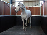 Pferden-Gummimatte/Qualität und verwendete Pferden-Stall-Matten