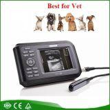Scanner d'ultrason de vétérinaire de Digitals Palmtop (V8) - Martin