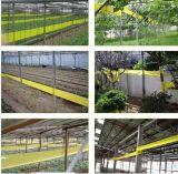 Antiparassitario degli insetticidi di Abamectin 95% TC
