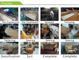 Série de canapé d'habitacle de salle d'exposition européenne (XYM-050)
