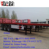 De Chinese TriAanhangwagen van de Vrachtwagen van het Vervoer van de Container van de As 40FT Flatbed Ernstige
