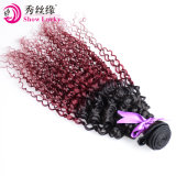 Het beste Verkopen Maleise Ombre Twee Bundel van het Menselijke Haar van Maleisië van het Weefsel van het Haar van de Kleur van de Toon de Lange Kroezige Krullende