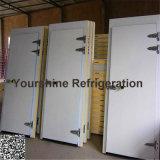 Изолированная Semi-Врезанная дверь для холодной комнаты, холодильных установок, замораживателя