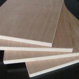 Álamos Core/Núcleo de Madera La madera contrachapada Okoume barniz
