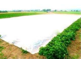 De Niet-geweven Producten van pp Spunbond voor de Dekking van de Landbouw