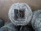 堅い単一か二重にツイストに電流を通されたとげがある鉄ワイヤー囲うこと