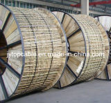Elektrische Leitung PVC-Isolierungs-Stahldraht Niederspannung LV-Nyry gepanzerte PVC-Isolierung