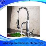 Seul l'enregistrement de l'eau de robinet de cuisine douche à main