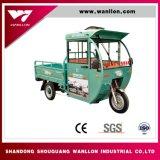 Semi-Fechar o adulto Using o triciclo elétrico da carga com cabine