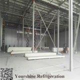 Fabrik-Preis-Isolierungs-Kühlraum PU-Panel mit SGS genehmigte