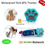 3G/WCDMA Les animaux de compagnie avec le GPS tracker étanche / Suivi en temps réel V40