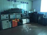 système d'alimentation solaire à C.A. de C.C 1kw pour l'usage à la maison