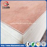 madera contrachapada comercial de 2m m 3m m 4m m 5m m Bintangor para los muebles y empaquetar