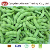 Haricots congelés de bonne qualité de soja/Edamame/grains de sojas