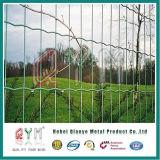 Сваренная загородка панели евро загородки евро PVC покрынная PVC сваренная