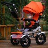 上の普及した中国Trikeは赤ん坊Trikeのセリウム公認の乗車をもてあそぶ