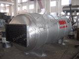 Wns Steam Boiler mit Gas Fired Manufacturer