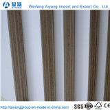 Álamo 4X8 Core de contrachapado de madera contrachapada de melamina precios baratos