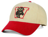 Embroidery Logo Good Quality New Baseball Cap