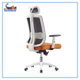 Novo design do mobiliário de escritório Office Cadeira de malha (câmara KBF-894A)