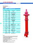 Hidrantes de incêndio Canhão seca AWWA C502 Com Ulfm Aprovado