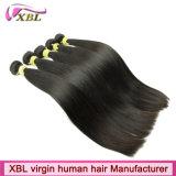Les cheveux humains mongols de trame de machine cousent dans des prolongements de cheveux