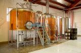 Matériel de Brew-sur-Lieux de bière, bière faisant la machine, matériel de bière de métier (ACE-THG-J1)
