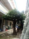 Árvore artificial do Ficus do projeto 2016 novo para a decoração