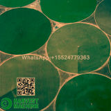 Pivote de centro de China para el sistema de irrigación de la granja de la agricultura para la instalación