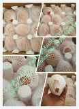 Le radis Extrusion net de la machine d'emballage en mousse