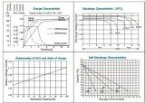 la valvola di 2V 600ah ha regolato &#160 acido al piombo; Batteria