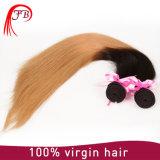 Omber europeu coloriu o cabelo humano do Virgin da onda do corpo de trama