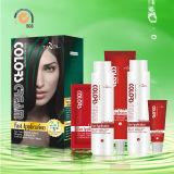 2016 Nouvelle crème Tazol Mettez en surbrillance la couleur des cheveux