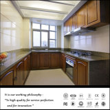 Пвх кухонные кабинета с 15 лет опыта (ZHUV)
