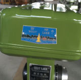 높은 정밀도 산업 드릴 프레스 25mm (Z4025)