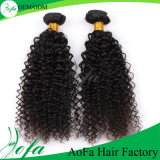 ねじれた巻き毛の自然なカラー人間の毛髪の織り方のバージンのブラジル人の毛