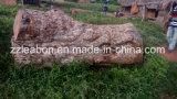 Verwendet Wald-und Fabrik-in der beweglichen Sägemühle-Holzbearbeitung-Maschine