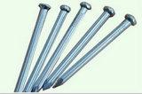 Pregos de aço concretos da venda quente com galvanizado