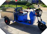 De open Elektrische Driewieler van het Type voor Lading