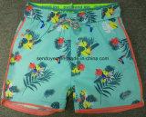 Shorts popolari della scheda del ragazzo