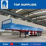 3 Container van de Aanhangwagen van de Zijgevel van assen de Semi 40FT - het Voertuig van de Titaan