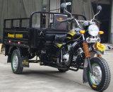 熱い販売OEMの小型三輪車3の車輪のオートバイ