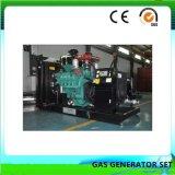 30 Kw Syngas silenciosa com Conjunto de Gerador Aprovado pela CE